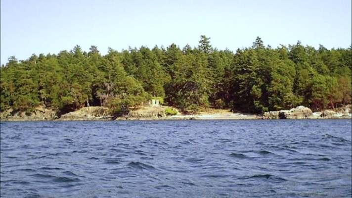 d-arcy-island.jpg